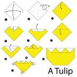 Instrucciones paso a paso cómo hacer papiroflexia un tulipán Foto de archivo libre de regalías