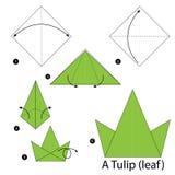 Instrucciones paso a paso cómo hacer papiroflexia un tulipán (hoja) Imagenes de archivo