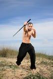 Instructeur d'arts martiaux Image libre de droits