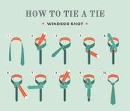 Instructies op hoe te om een band op de turkooise achtergrond van de acht stappen te binden Windsorknoop Vector illustratie Stock Fotografie