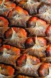 Instruction-macro d'ananas Image libre de droits