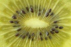Instruction-macro d'un kiwi Photographie stock