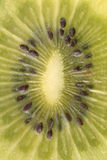 Instruction-macro d'un kiwi Photo libre de droits