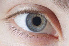 Instruction-macro de œil bleu Photos stock