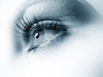 Instruction-macro de œil bleu photographie stock