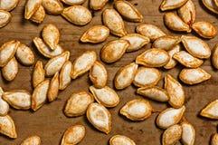 Instruction-macro de graine de citrouille. Photo stock