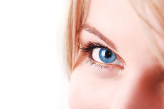 Instruction-macro de œil bleu Images stock