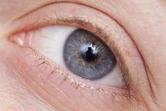 Instruction-macro de œil bleu Image stock