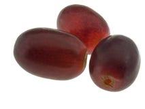 Instruction-macro de raisin rouge Photos stock