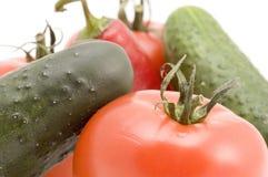 Instruction-macro végétal Photos libres de droits