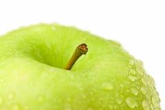 Instruction-macro vert de pomme Photographie stock