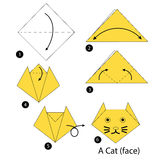 Instructions étape-par-étape comment faire à origami un chat Photographie stock libre de droits