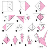 Instructions étape-par-étape comment faire à origami un oiseau Image stock