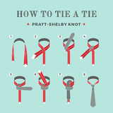 Instructions on how to tie a tie on the turquoise background of the six steps. Pratt-Shelby knot. Vector Illustration. Royalty Free Stock Photography