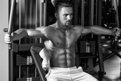Instructor in bodybuilding. muscular man training in gym. Instructor in bodybuilding. Handsome young man with sexy muscular wet body and bare back training with Stock Image