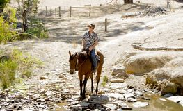 Instructor or cattleman riding horse in sunglasses, cowboy hat and rider boots. Young horse instructor or cattleman riding the animal wearing sunglasses, cowboy royalty free stock image
