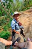 Instructor del elefante Imagenes de archivo