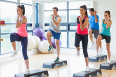 Instructor with fitness class performing step aerobics exercise. Full length of instructor with fitness class performing step aerobics exercise in gym Royalty Free Stock Photography
