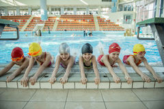 Instructor and group of children doing exercises near a swimming pool.  royalty free stock photography