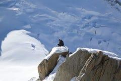 Instructor no identificado de los escaladores en la estación del top de la montaña de Aiguille du Midi en las montañas francesas Foto de archivo