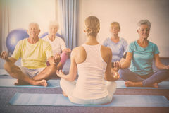 Instructor performing yoga with seniors. During sports class Stock Photography