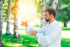 An instructor practice of Tai Chi Chuan in the park. An instructor practice  of Tai Chi Chuan in the park. Detail of hand positions Stock Photos