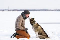 Instructor y huskyes siberianos Imagenes de archivo