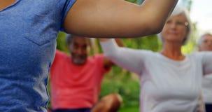 Instructor y mayores que realizan yoga en el jardín 4k almacen de video