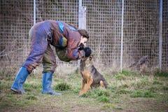 Instructor y su perro en curso de socialización Imagen de archivo