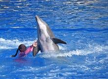 Instruktör med delfin Royaltyfri Foto