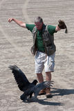 Instruktören utför fågelShow med gammet royaltyfria bilder