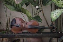Instrument classique de violon horizontal avec le fond naturel photo libre de droits