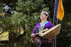 Instrument de musique traditionnel de Mapuche photos stock