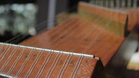 Instrument för indonesKecapi traditionellt musik Royaltyfria Foton