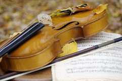 Instrument with leaves and musical sheet. Violin and musical sheet isolated in fall season Royalty Free Stock Image