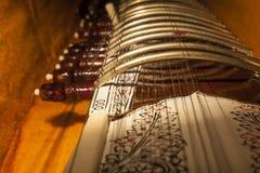 Instrumentengeval met Sitar, een koord traditionele Indische musical stock afbeelding