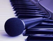 Instrumento de música Foto de Stock Royalty Free