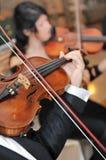 Instrumento de música do violino. Jogador clássico Fotografia de Stock Royalty Free