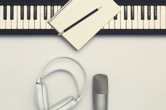 Instrumento musical en el fondo blanco foto de archivo