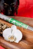 Instrumentos médicos chineses Imagem de Stock Royalty Free