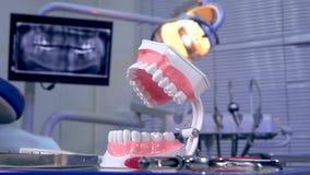 Instrumentos modelo del diente en la tabla del dentista e imagen panorámica de la radiografía en el fondo metrajes