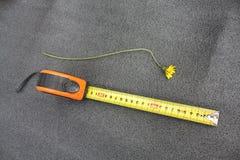 Instrumentos roulette Tudo para o reparo e a emenda Fotografia de Stock Royalty Free