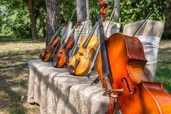Instruments de musique en nature Photo libre de droits