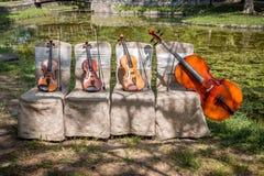 Instruments de musique en nature Photos libres de droits