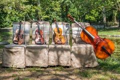 Instruments de musique en nature Photographie stock libre de droits