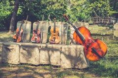 Instruments de musique en nature Photos stock