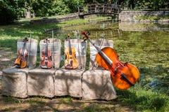 Instruments de musique en nature Photographie stock