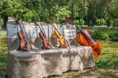 Instruments de musique en nature Images stock