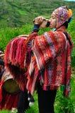 instrumentu mężczyzna bawić się Fotografia Royalty Free