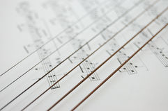 instrumentu muzyk zauważa sznurki obrazy royalty free